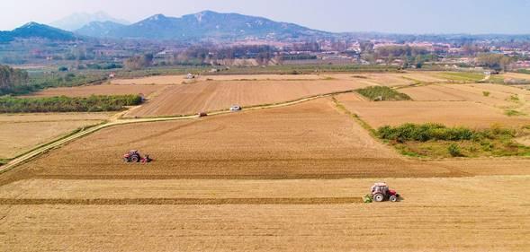 3国丰现代农业